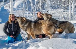 lupi e uomini